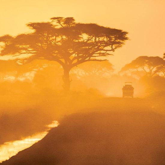 africa's ultimate safari destinations